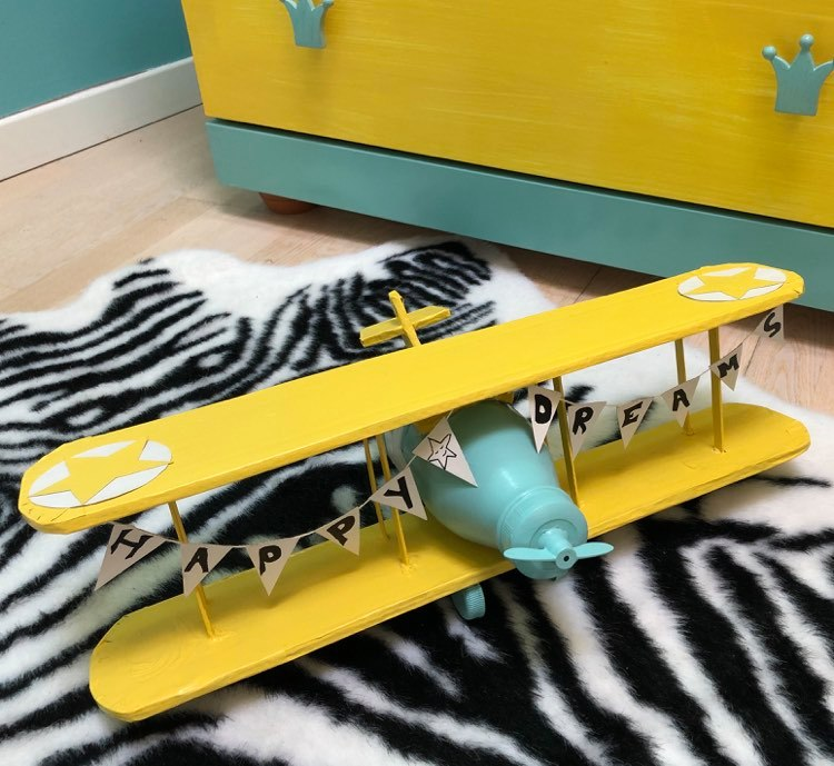 Avion carton
